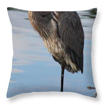 Great Blue Heron One Legged Stance Throw Pillow by Robert Banach