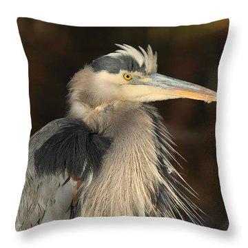 Great Blue Heron Portrait Throw Pillow by Daniel Behm