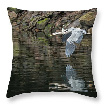 Great Blue Heron Reflections Throw Pillow by Jennifer Casey