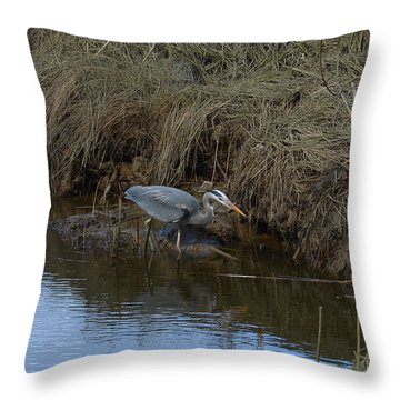 Great Blue Heron Searching Throw Pillow by Lawrence Christopher