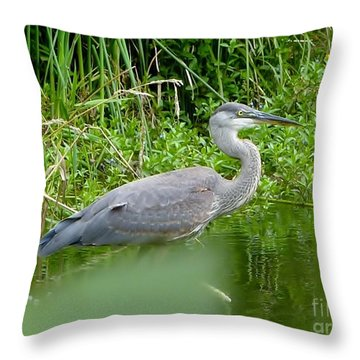 Throw Pillow featuring the photograph Great Blue Heron  by Susan Garren