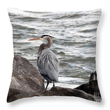 Throw Pillow featuring the photograph Great Blue Heron by Trina  Ansel
