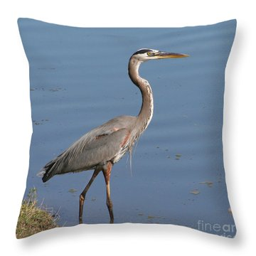 Throw Pillow featuring the photograph Great Blue Heron Wading by Bob and Jan Shriner