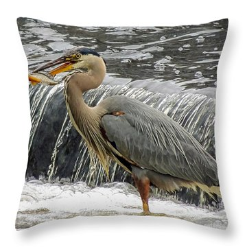 Great Blue Heron With Fish Throw Pillow