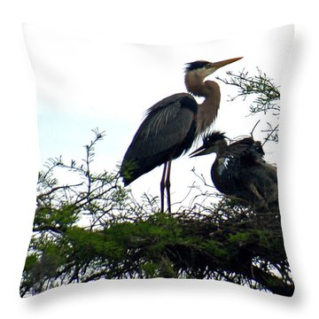 Great Blue Heron With Fledglings II Throw Pillow by Suzanne Gaff