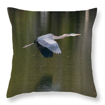 Throw Pillow featuring the photograph Great Blue Over Green by Paul Rebmann