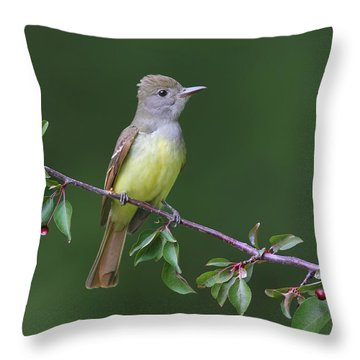 Great Crested Flycatcher Throw Pillow by Daniel Behm