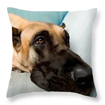 Great Dane Dog On Sofa Throw Pillow by Lanjee Chee