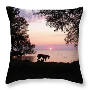 Great Dane Sunset Throw Pillow by Aimee L Maher Photography and Art Visit ALMGallerydotcom