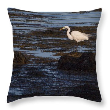Great Egret At Avery Point Throw Pillow