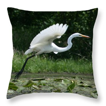 Great Egret Elegance   Throw Pillow by Neal Eslinger
