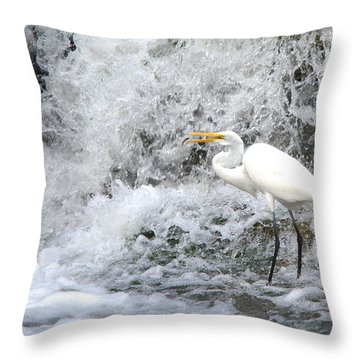 Great Egret Hunting At Waterfall Series 1 Throw Pillow