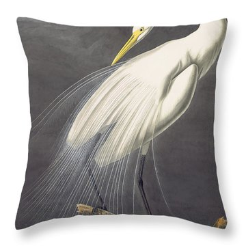 Throw Pillow featuring the painting Great Egret  by Celestial Images