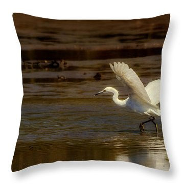Great Egret Taking Off Throw Pillow