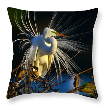 Great Egret With Breeding Plumage 1 Throw Pillow