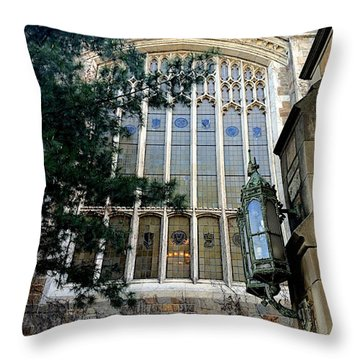 Great Glass Throw Pillow