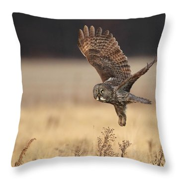 Great Gray Owl Liftoff Throw Pillow by Daniel Behm