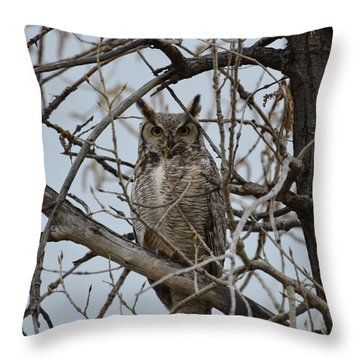 Great Horn Perched Throw Pillow