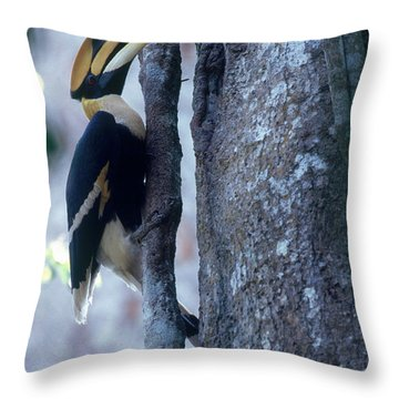 Great Hornbill Throw Pillow
