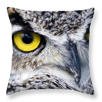 Great Horned Closeup Throw Pillow