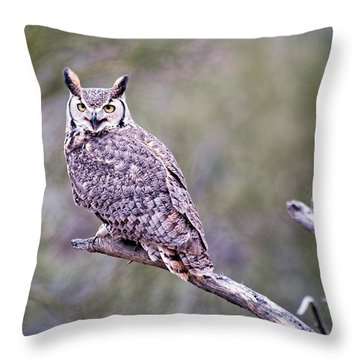 Throw Pillow featuring the photograph Great Horned Owl by Dan McManus