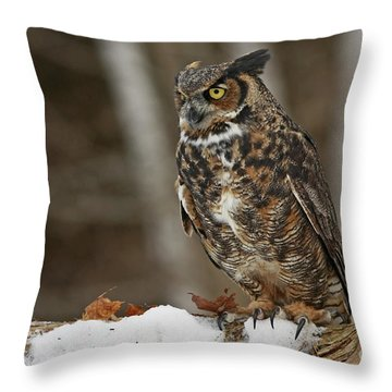Great Horned Owl In A Snowy Winter Forest Throw Pillow by Inspired Nature Photography Fine Art Photography
