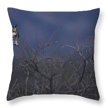 Great Horned Owl Pair At Twilight Throw Pillow by Daniel Behm