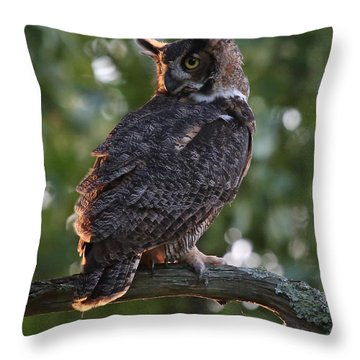 Great Horned Owl Profile Throw Pillow