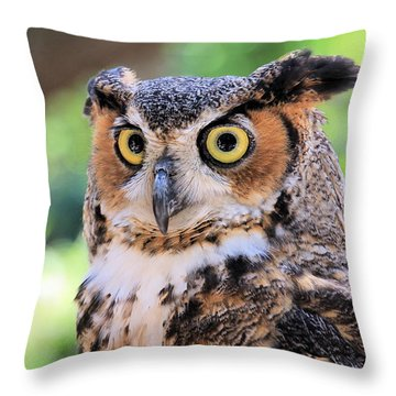 Throw Pillow featuring the photograph Great Horned Owl by Rosalie Scanlon