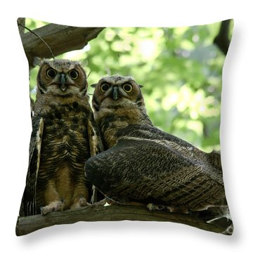 Great Horned Owls Throw Pillow by Cheryl Baxter
