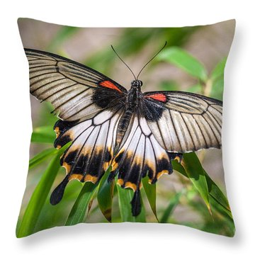Great Mormon Throw Pillow