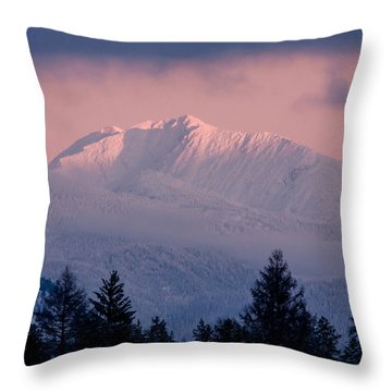 Throw Pillow featuring the photograph Great Northern by Jack Bell
