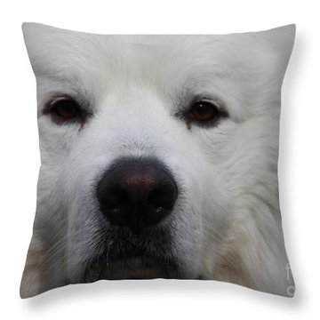 Great Pyrnesse Portrait Throw Pillow by John Telfer