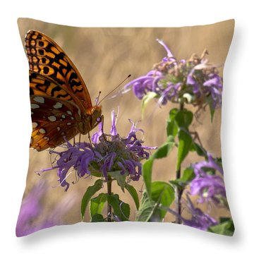 Great Spangled On Bee Balm Throw Pillow by Shelly Gunderson