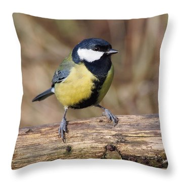 Great Tit On A Log Throw Pillow