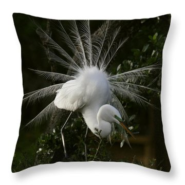Great White Egret Displaying Throw Pillow by Myrna Bradshaw