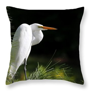 Great White Egret In The Tree Throw Pillow by Sabrina L Ryan