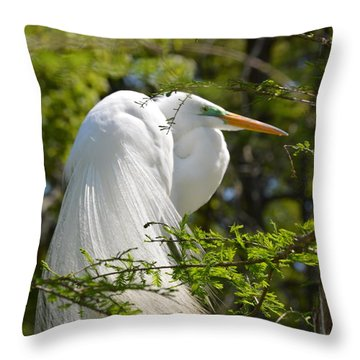 Great White Egret On Nest Throw Pillow by Judith Morris