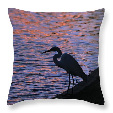 Great White Egret Silhouette  Throw Pillow
