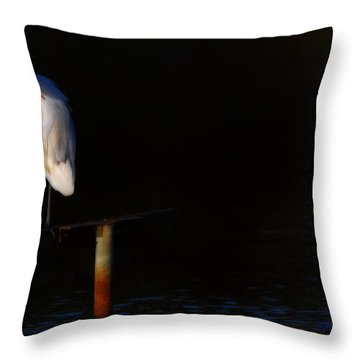 Great White Evening Throw Pillow