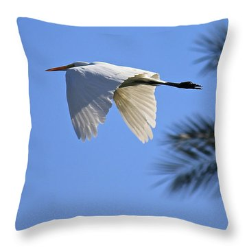 Throw Pillow featuring the photograph Great White In Flight by Penny Meyers