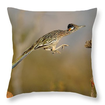 Greater Roadrunner Leaping Throw Pillow