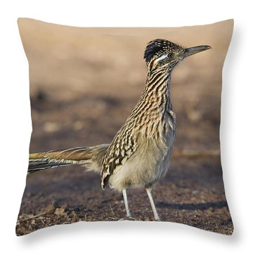 Greater Roadrunner New Mexico Throw Pillow