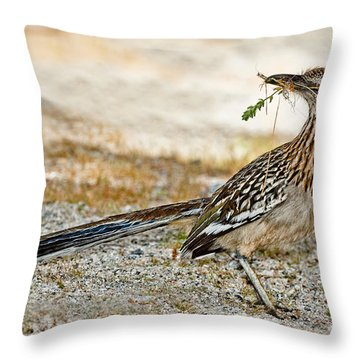 Greater Roadrunner With Nest Material Throw Pillow