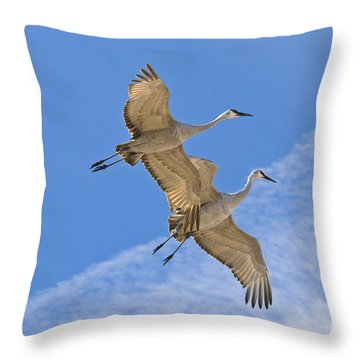 Greater Sandhill Cranes In Flight Throw Pillow by William H Mullins