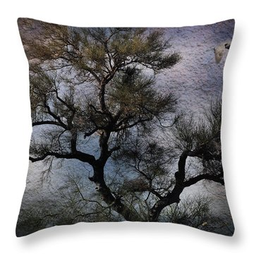 Throw Pillow featuring the photograph Greatness by Barbara Manis