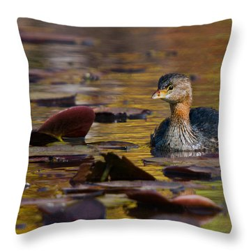 Grebe In The Lillies Throw Pillow by Timothy McIntyre