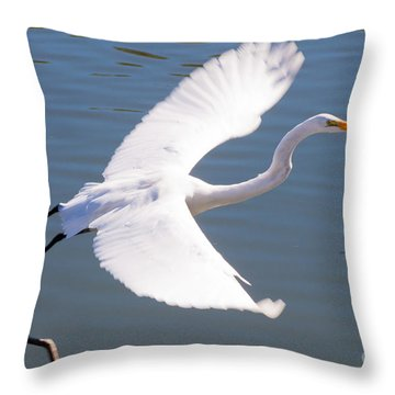 Greeat Egret Flying Throw Pillow by Thomas Marchessault