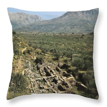 Morea Throw Pillows