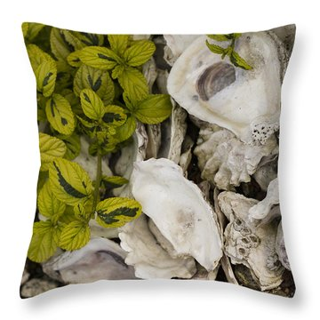 Green Abalone Throw Pillow